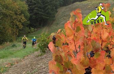 Beaujolais Villages Trail